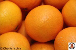 Teddybär Orangen in Tirol